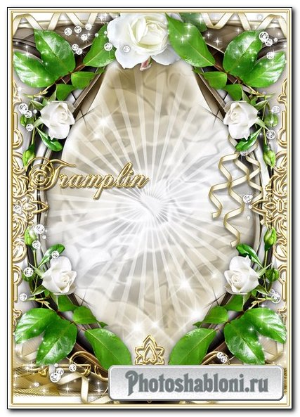 Рамку для фото с белыми розами – Белели купины, как взлет лебединый