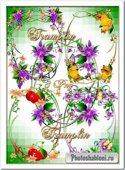 Рамки-вырезы в Png - Цветы, фрукты, завитушки