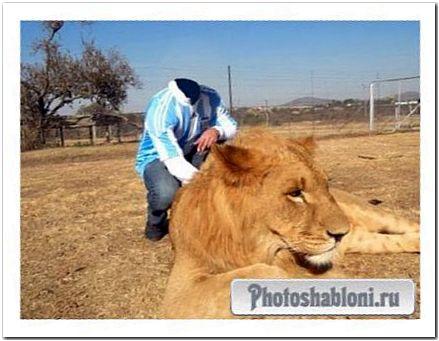 Шаблон psd мужской - Фото с царем зверей