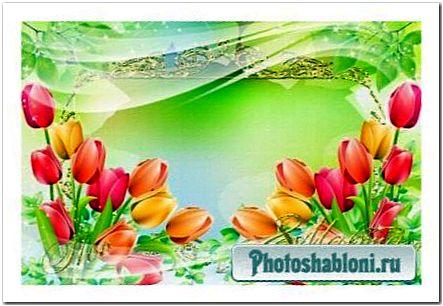 Рамочка для фото - Нежные тюльпаны