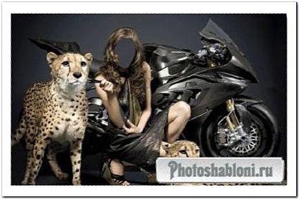 Женский шаблон - Девушка с дикими гепардами на фоне байка