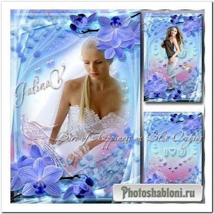 Романтическая рамка - Птица счастья на синих орхидеях