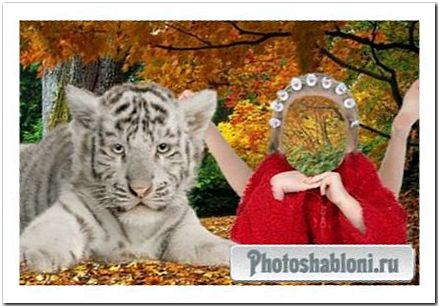 Шаблон для фотошопа -C тигренком