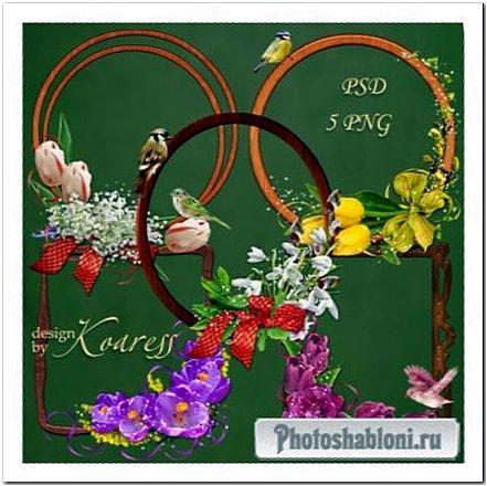 Деревянные рамки-вырезы с птичками и цветочными уголками для фотошопа - Весеннее настроение