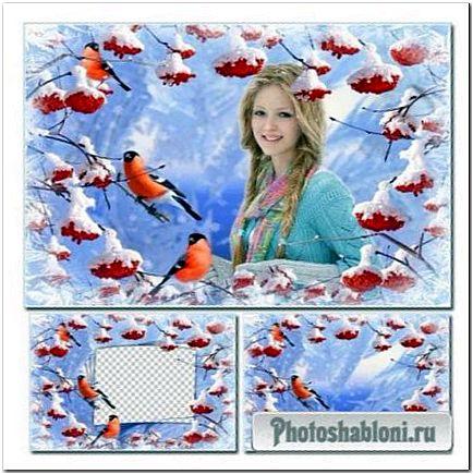 Зимняя рамка для фотошопа - Рябина и снегири