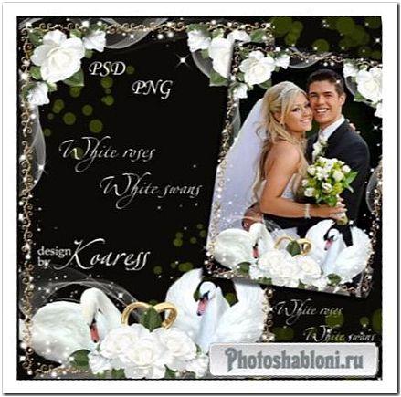Свадебная рамка для фотошопа - Белые розы, белые лебеди