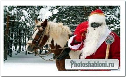 Дедушка мороз с лошадью в лесу - шаблон для фото