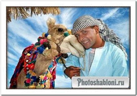 Шаблон для фото - Фото с верблюдом