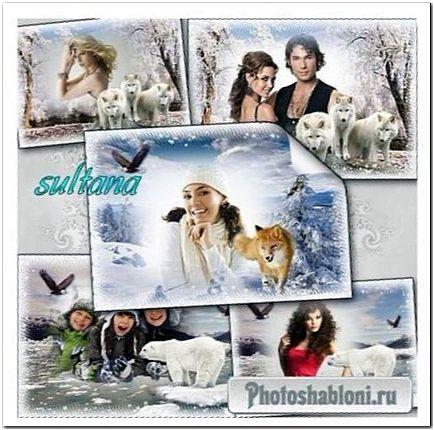 Зимние рамки для фото - Волки, лисы и белые медведи