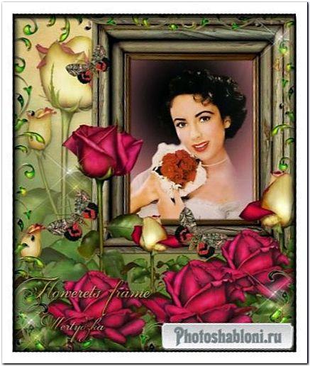 Рамка для фото в винтажном стиле - Восхительные розы