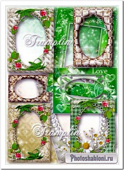 Коллекция из 20 рамок с завитками и цветами на прозрачном фоне
