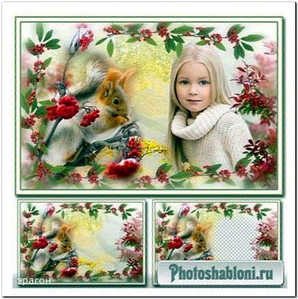 Рамка-коллаж для фотошопа - Белочка в рябине