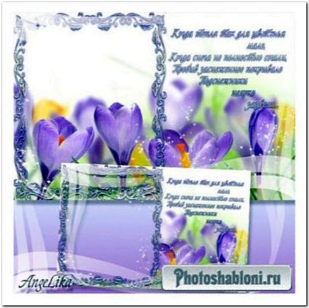 Рамка-открытка для фото - Крокусы, весенние цветы