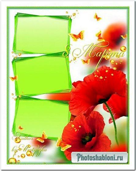 Рамка для фотошопа - Красные маки в поле зеленом радуют душу и сердце