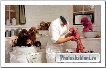 Шаблон мужской - Решил покрасить собак