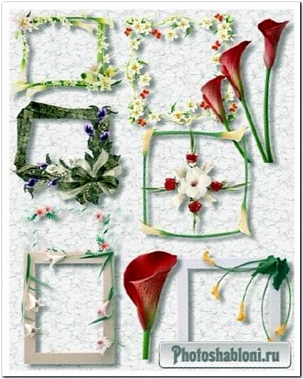 PNG Рамки вырезы с лилиями