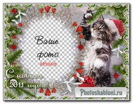 Зимняя рамка для фото - Забавный котенок в новогодней шапке