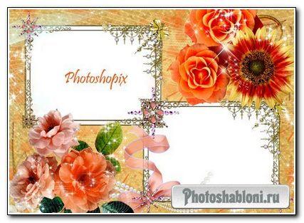 Рамка для Photoshop на два фото – Оранжевые розы