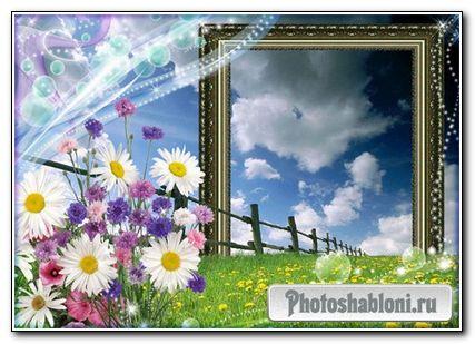Романтическая фоторамка - Полевые цветы