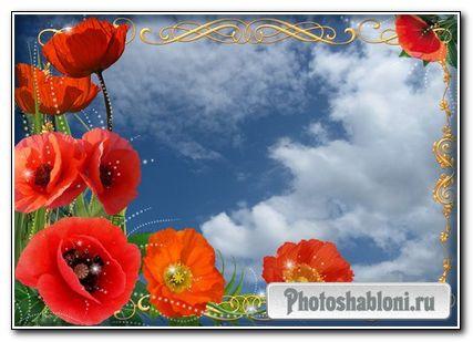 Романтическая фоторамка - Маков цвет