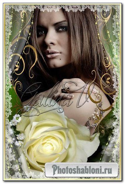 Рамка для фото - Роскошная роза