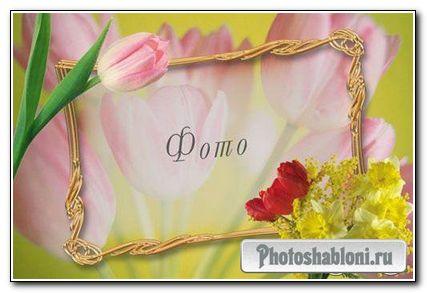 Pамка для фотошопа - Весенние цветы