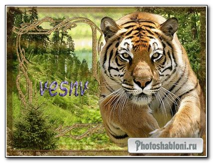 рамка для фото - тигр в прыжке