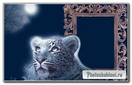 Рамка для фото - С тигренком