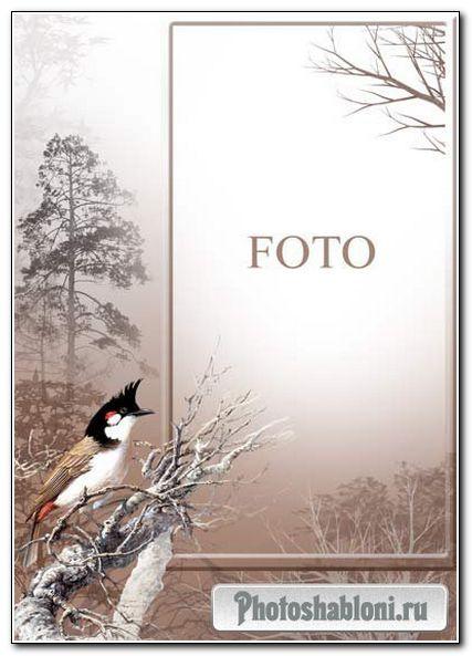 Рамка для фото «Птицы-2»