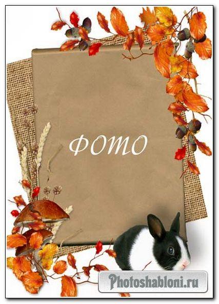 Рамка для детского фото - Осенняя с кроликом