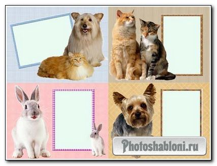 Набор рамок для фото - Домашние любимцы