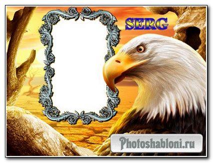 Рамка для фото Орел в пустыне
