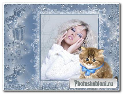 Рамочка для фото -Милый котенок