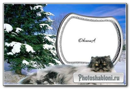 Рамка для фотошоп – в год кота
