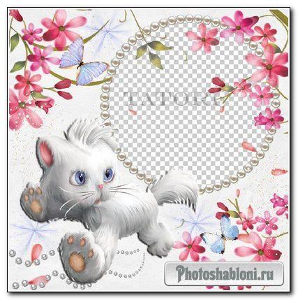Рамка для фотошоп-Белый котёнок