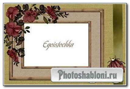 Рамка для фото «Стильная гармония»