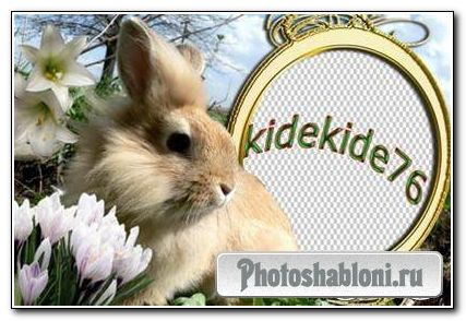 Рамка для фотошопа - Кролик