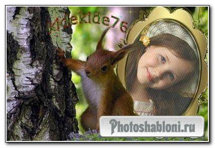 Рамка для фотошопа - Белочка
