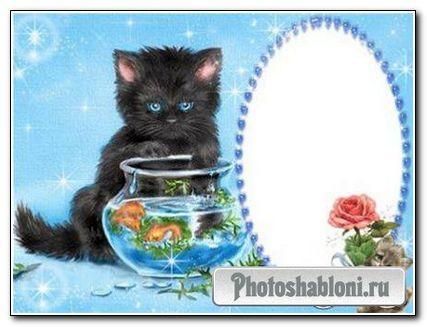 Рамочка для фотошопа с Котёнком!