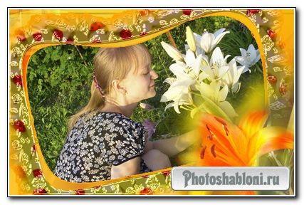 Рамка для Photoshop - Летняя