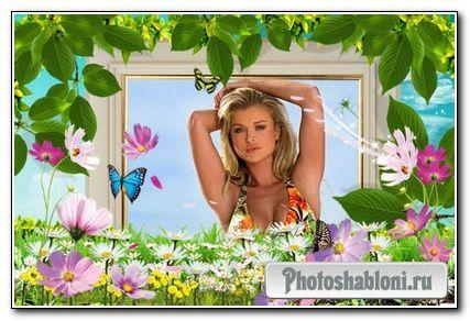 Рамка для фотошопа – Лето и цветы