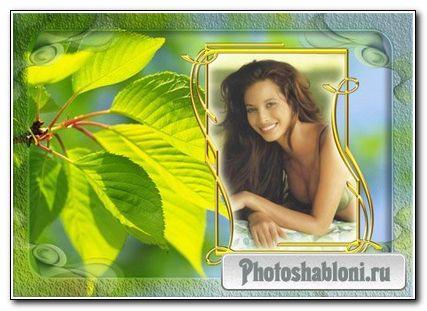 Фоторамка с листьями