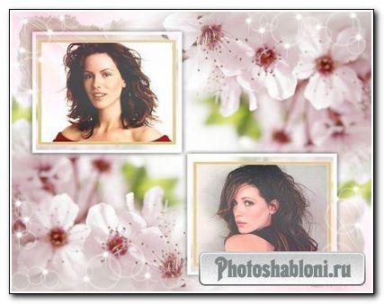 Рамка для фото - Весенний первоцвет