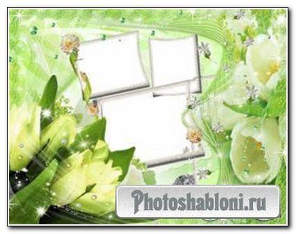 Рамка для PhotoShop «Весенний водоворот»